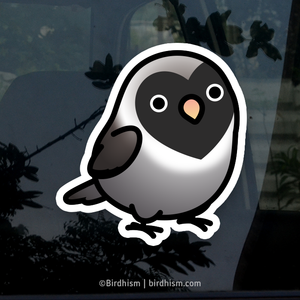 Chubby Black-masked, Black Lovebird Stickers