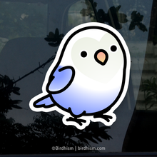 Chubby Light Blue Fischer's Lovebird Stickers