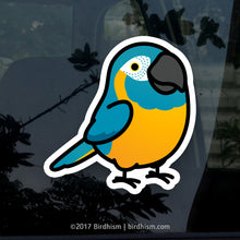 Chubby Blue-throated Macaw Stickers