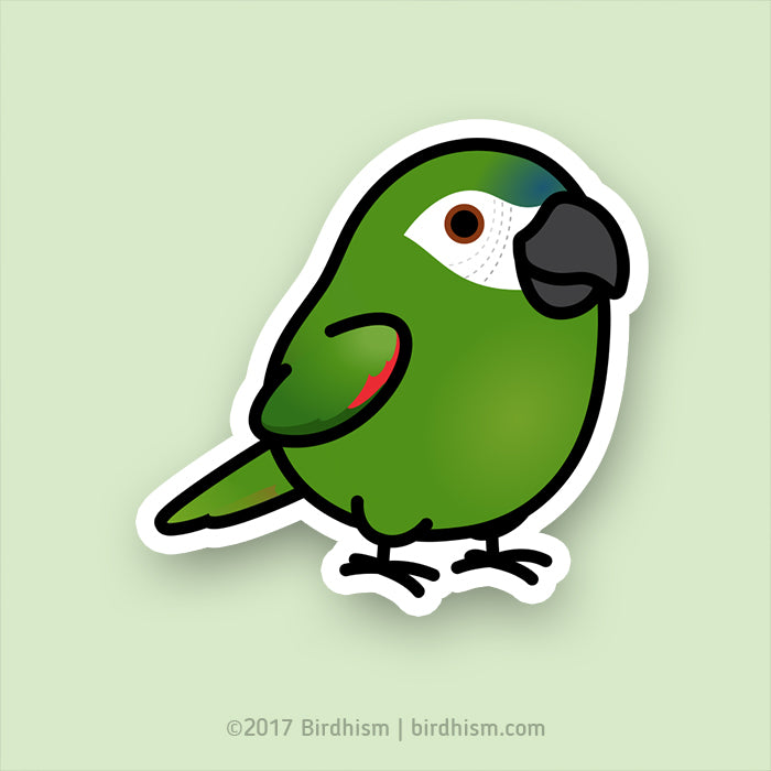 Chubby Hahn's Macaw Stickers