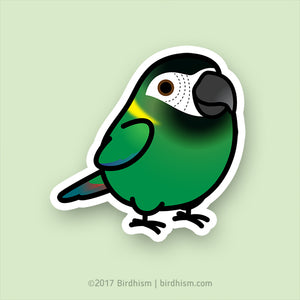 Chubby Yellow-collared Macaw Stickers