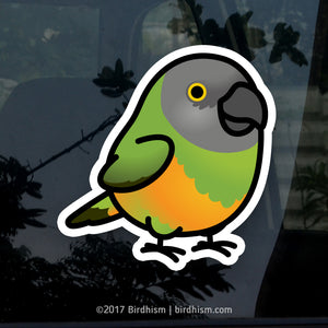 Chubby Senegal Parrot Stickers