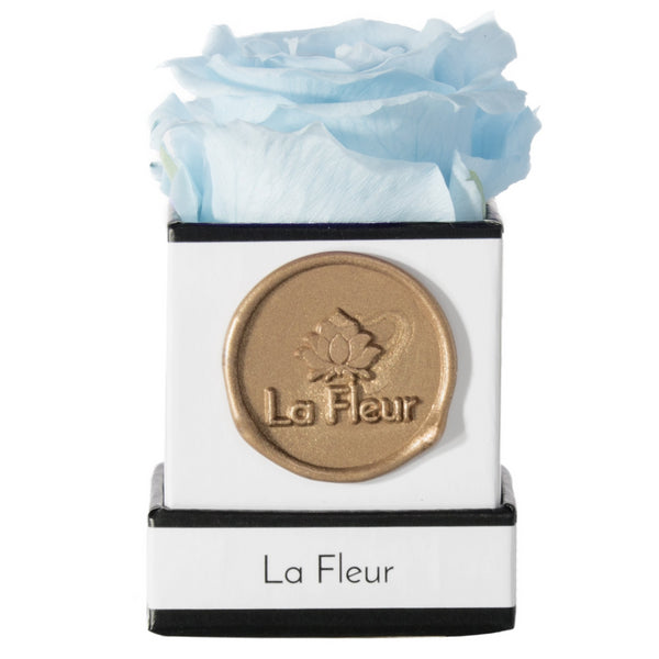 Mini - Lasts for Years - La Fleur Bouquets
