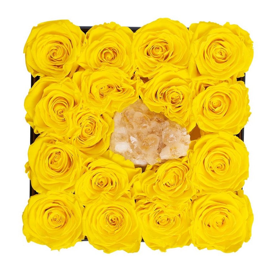 Citrine - Crystal Collection