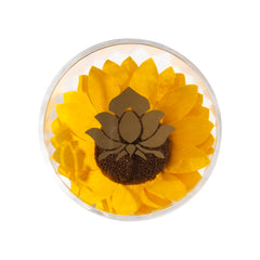 Sunflower Single