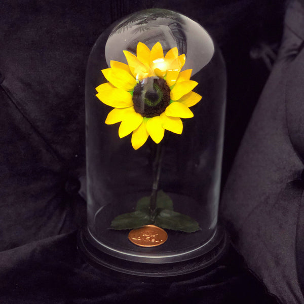 The Enchanted Sunflower