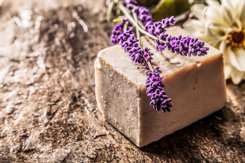 Essential Oil Bison Soap