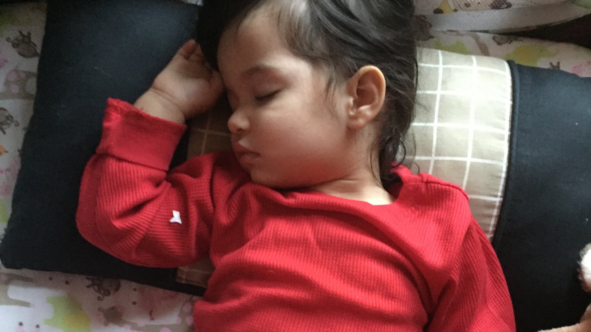 Sleep Deprived? Going Loca? Tips on Dealing with Toddler Sleep Issues