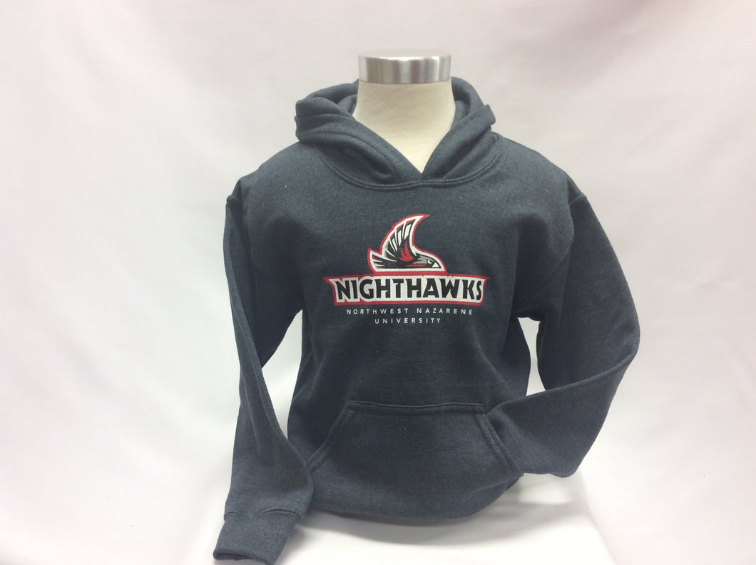 Youth Nighthawks Graphic Hood