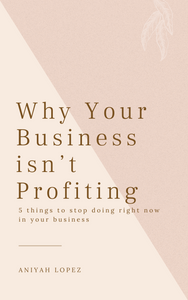 5 Reasons You Can't Profit From Your Business