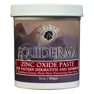 Equiderma Zinc Oxide Paste For Pastern Dermatitis & Sunburn