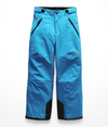 The North Face Freedom Insulated Boys Ski Pants
