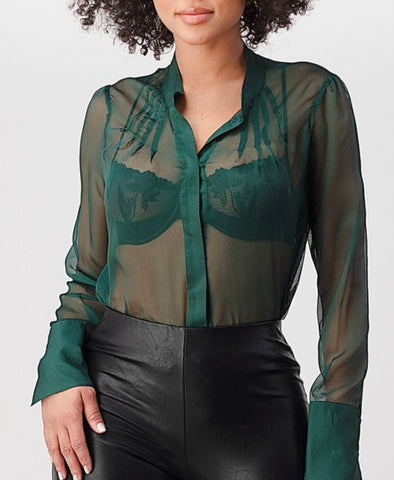 Sheer me blouse