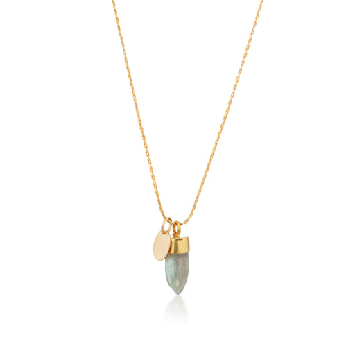 Stone And Tag Necklace Gold Labradorite