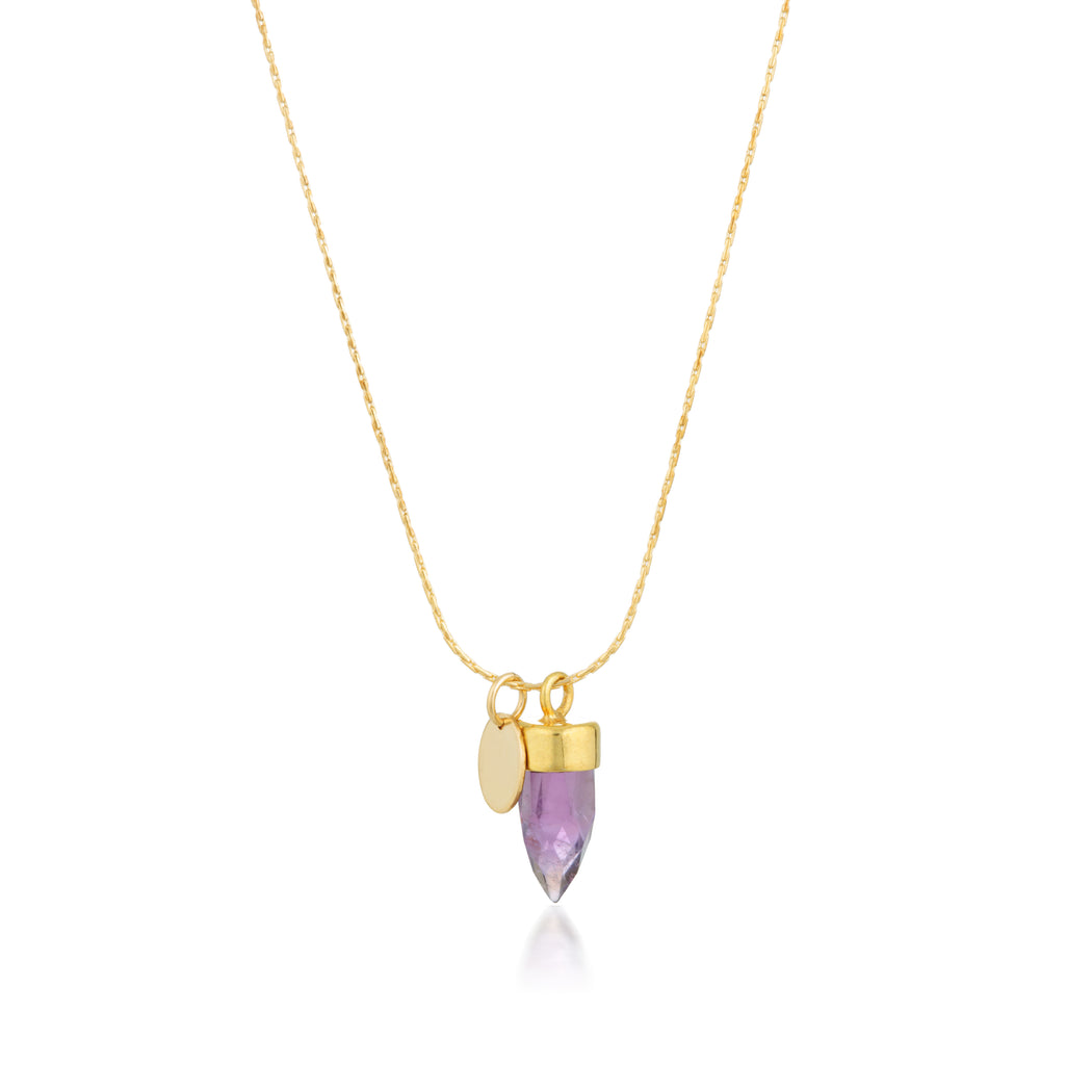 Stone And Tag Necklace Gold Amethyst