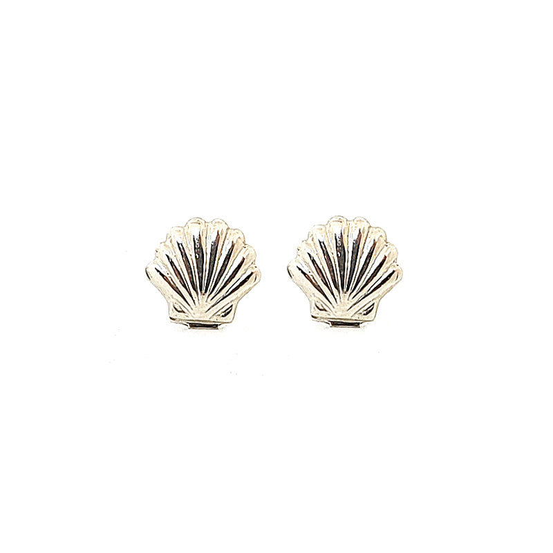 Silver Sea Shell Stud Earrings