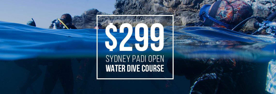 PADI-open-water-scuba-dive-course