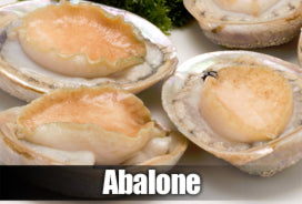 Cooking abalone recipes