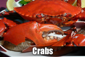 Cooking crab recipes