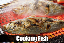 Cooking fish recipes