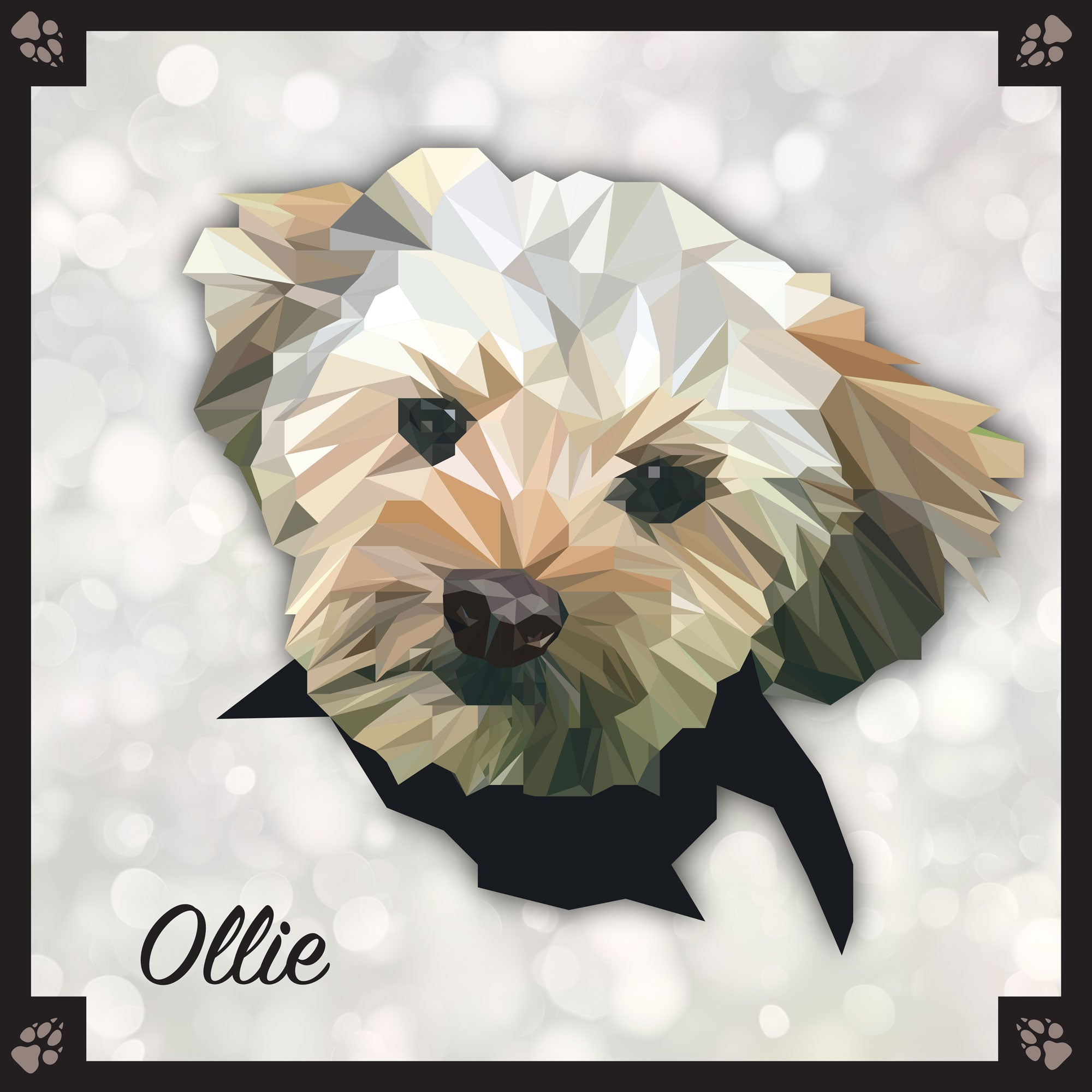Yorkipoo - Breed Dog Portrait