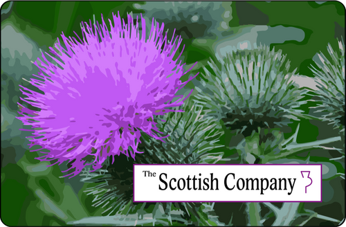 The Scottish Company Online Gift Card