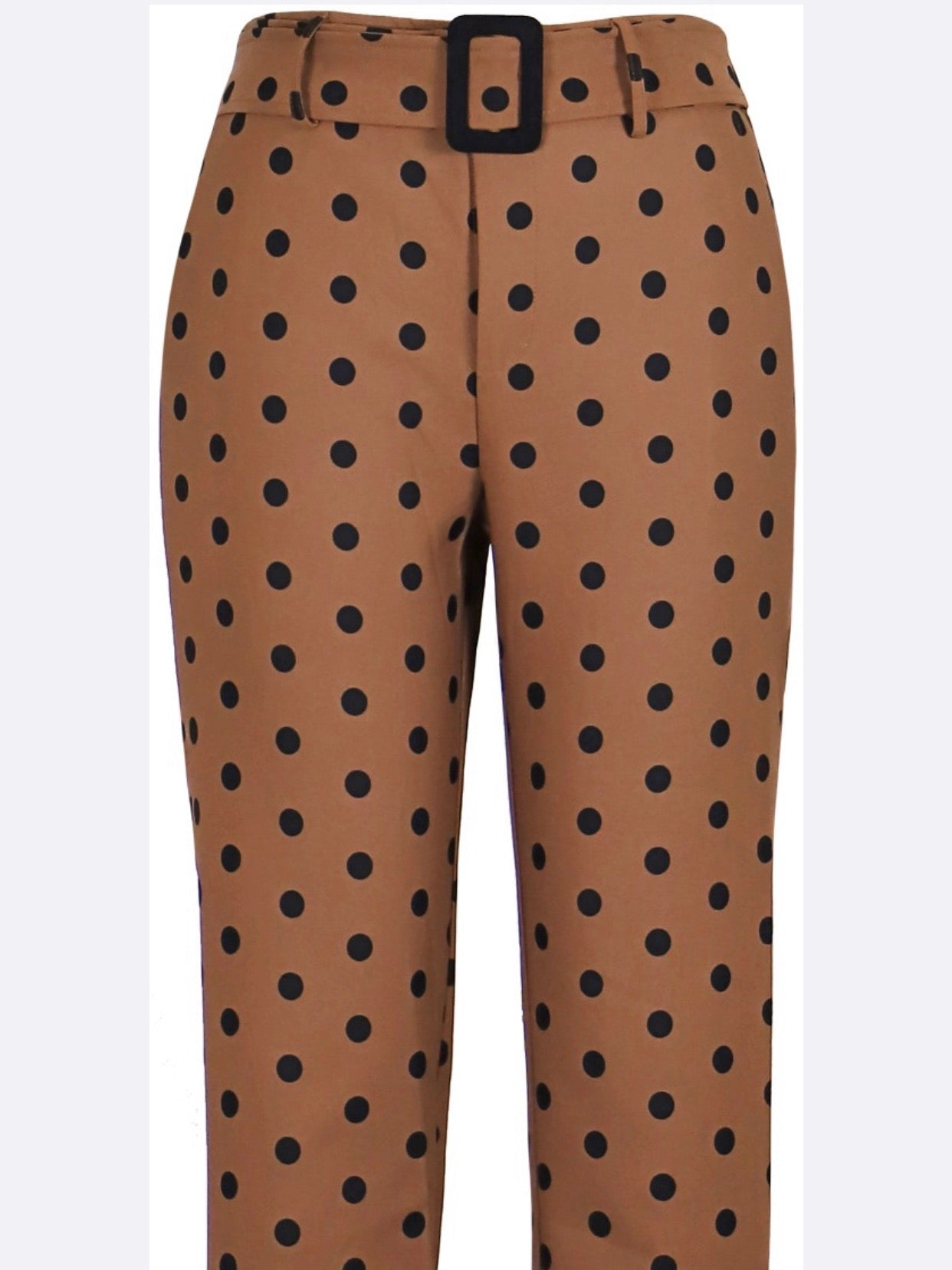 Brown Polka Dot Trouser