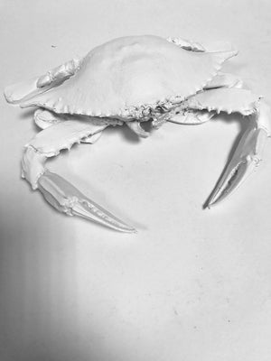 White Decorative Crabs