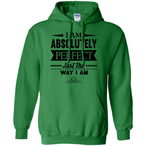 I Am Absolutely - Unisex Pullover Hooded Sweatshirt