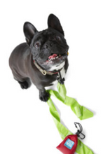 Load image into Gallery viewer, Dog waste Disposal Bags with carry pouch