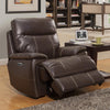 Dylan Mahogany Power Recliner