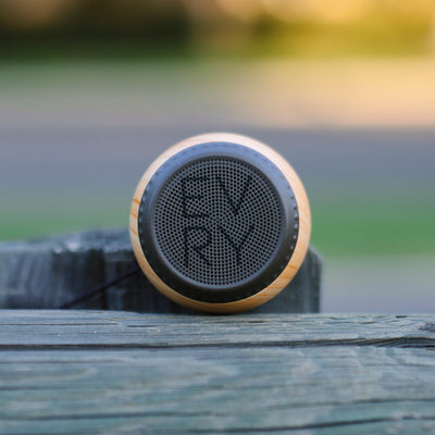 Mini Bluetooth Speaker - EVRY Family