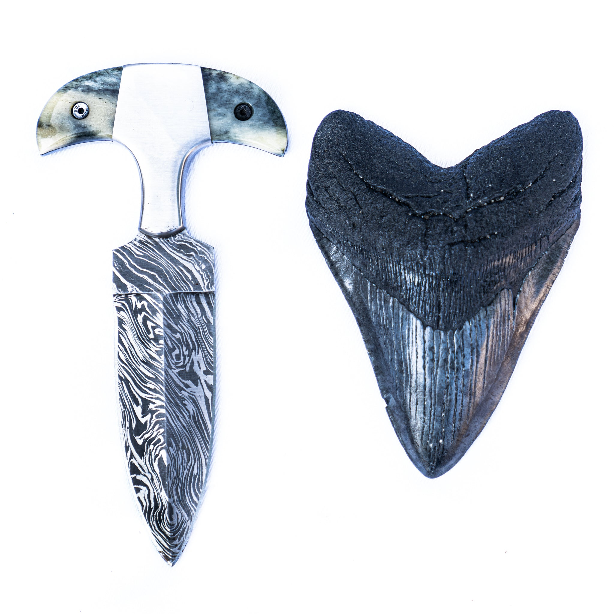 Shark Tooth Knife- High Carbon Damascus Steel- Bone Handle
