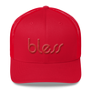 """Bless"" Color on Color Trucker Dad  Cap BWR"