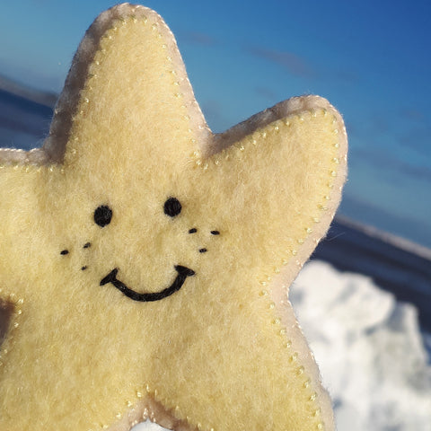 Sandy the Starfish Felt Cookie Toy