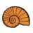 Stylish Sea Shell Shaped Anti-Slip Natural Coir Floor Mat