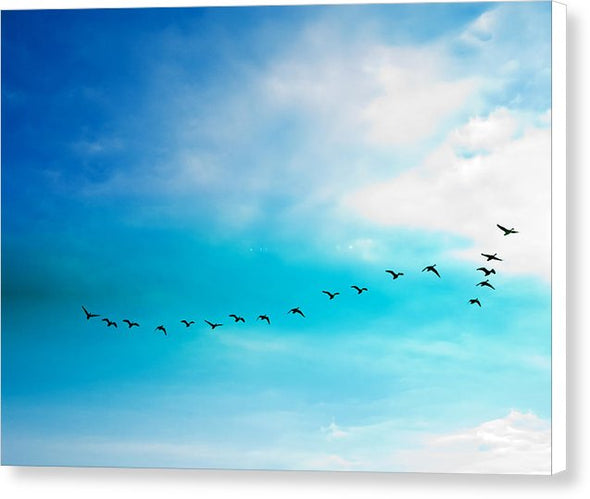 Flying Away - Canvas Print
