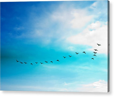 Flying Away - Acrylic Print