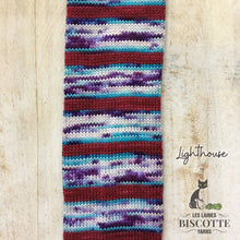 Biscotte Yarns Bis-Sock Self-Striping