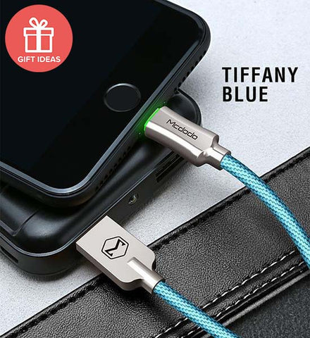 Charging Cable - Auto-Disconnect Battery Protection with LED Light