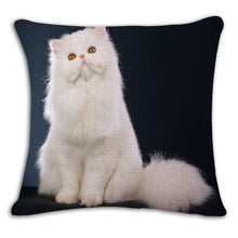 "Square Printed Linen Cushion Cover Colorful Cartoon Cats Decorative 18'' X 18"" (45cm x 45 cm) - The White Rose USA"