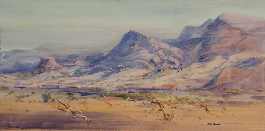 Desert and Haasts Bluff Range