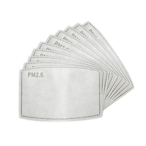 PM 2.5 Filter Replacements