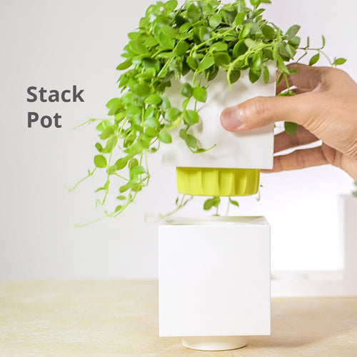 TG-09 (Stack Pot)