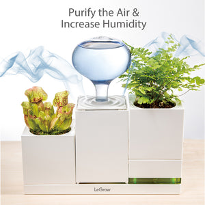 TG-HP (Humidifier and Power)