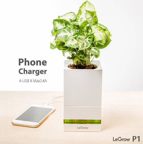 TG-P1 (Phone Charger)