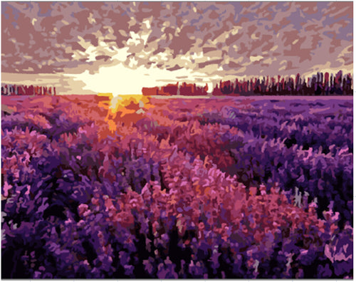 Sunset on a lavender field - DIY Paint By Numbers Kits for Adults