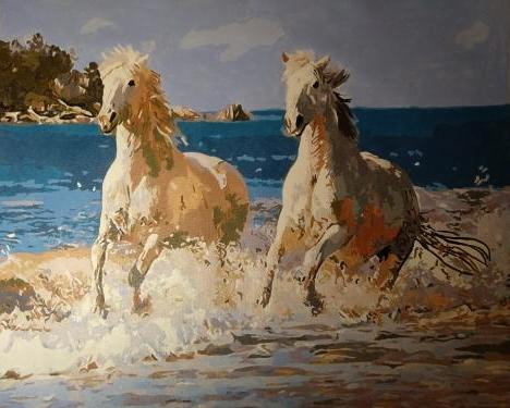 White horses in the water