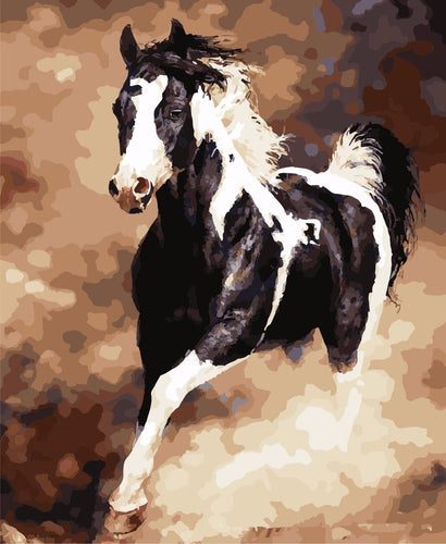 Black & White horse - DIY Paint By Numbers Kits for Adults