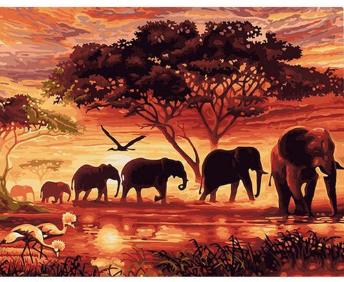 Elephant herd at sunset